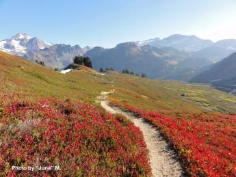 PCT Washington Glacier Peakへと伸びる道