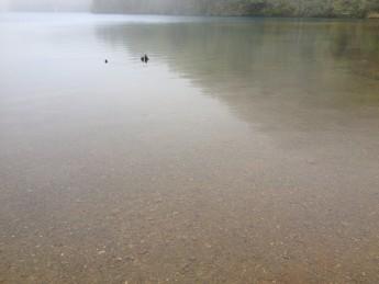 Section D 長野県 志賀高原 綺麗な水だが飲めない