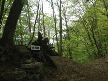 Section B 埼玉県古い交流の証 赤岩峠