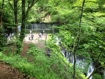 Section C 長野県 信濃路自然歩道 白糸の滝 観光客に混じり