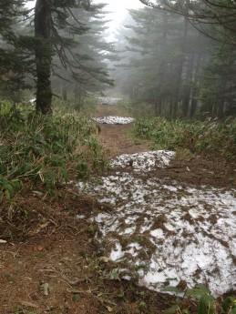 Section C 群馬県 茨木山周辺 残雪の道
